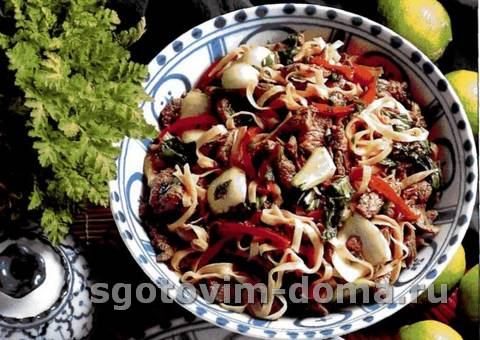 govyadina_po-taiski_myaso_po_aziatskomu_receptu_1.jpg