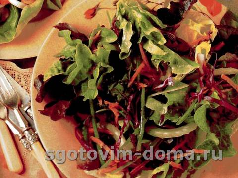 salat_ogorodnyi_1.jpg