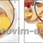 Рецепт домашнего майонеза в блендере